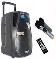 Портативная акустика на аккумуляторе DP12-02 / 160W (USB/Bluetooth/2 радиомикрофона)