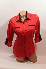 Женские однотонные рубашки (хлопок+ликра) Mod-da 4930 горошек красный ср., фото 2