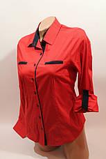 Женские однотонные рубашки (хлопок+ликра) Mod-da 4930 горошек красный мелкий, фото 2