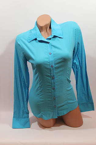 Женские однотонные рубашки (хлопок+ликра) ML norma odnot. голубой , фото 2