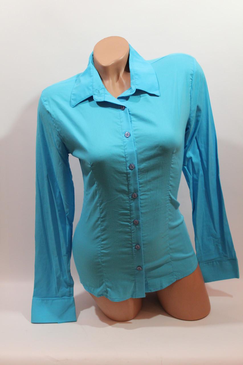 Женские однотонные рубашки (хлопок+ликра) ML norma odnot. голубой