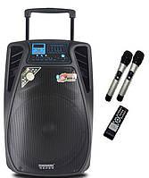 Активная колонка DP15-02 / 200W (USB/Bluetooth/2 радиомикрофона)