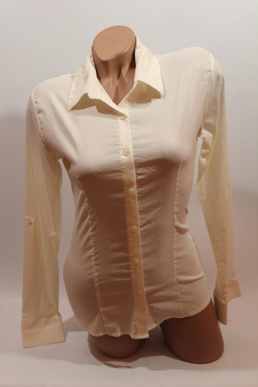 Женские однотонные рубашки (хлопок+ликра) ML norma odnot. молочный