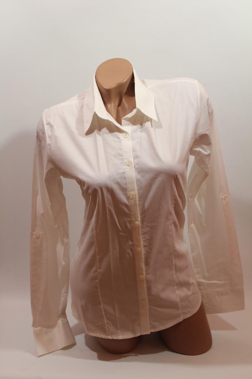 Женские однотонные рубашки (хлопок+ликра) ML norma odnot. белый