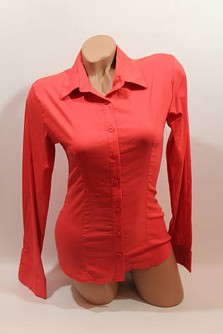 Женские однотонные рубашки (хлопок+ликра) ML norma odnot. коралл, фото 2