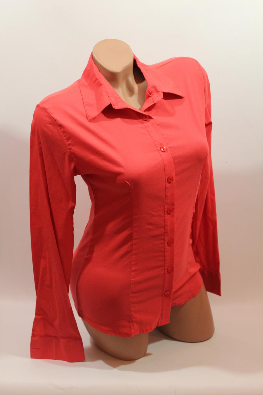 Женские однотонные рубашки (хлопок+ликра) ML norma odnot. коралл