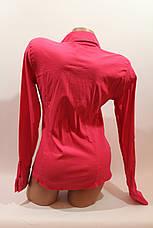 Женские однотонные рубашки (хлопок+ликра) ML norma odnot. малина, фото 3