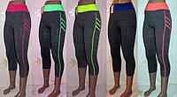 Бриджи спортивные женские, 46-50 размер