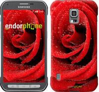 "Чехол на Samsung Galaxy S5 Active G870 Красная роза ""529u-364"""