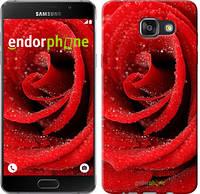 "Чехол на Samsung Galaxy A7 (2016) A710F Красная роза ""529c-121"""