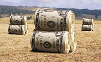 Мораторий на продажу земли: экономист объяснил, кто «греет руки» на текущей ситуации