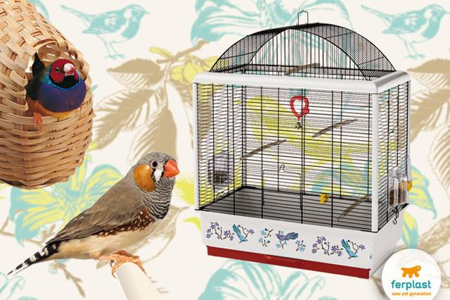Клетки Ferplast для мелких птиц