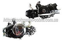 """Двигатель   Delta 110cc   (АКПП, копия двигателя Honda cub с двойным сцеплением)   """"TZH"""""""