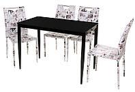 Стол обеденный в современном стиле Т-300-11, каленое стекло+ крашенный метал, 110*60*75(H)