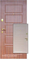 Двери входные Steelguard DG-21 (179)