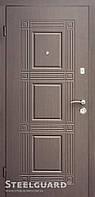 Двери входные Steelguard DO-18 (179)
