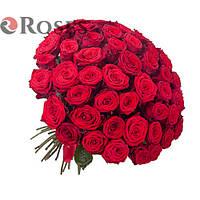 Гран При 51 красная роза