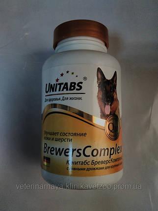 Unitabs Бреверс комплекс с пивными дрожжами для крупных собак., фото 2