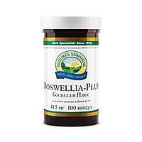 Босвеллия Плюс  Boswellia Plus- оказывает противовоспалительное действие и облегчает доступ крови к воспаленны