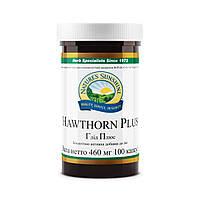 Боярышник Плюс Hawthorn Plus-нормализует артериальное давление и метаболические процессы миокарда