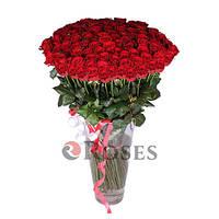 Престиж 101 красная роза
