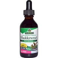 Nature's Answer, Экстракт бурой водоросли, слабоалкогольный, 1000 мг, 2 жидких унции (60 мл)