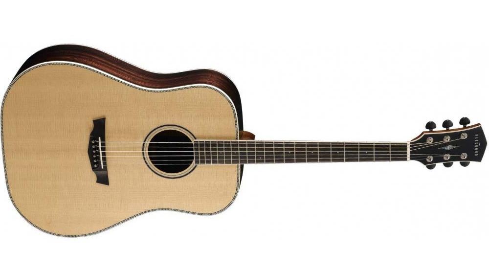 Акустическая гитара Cort  PW510 Nat w/case