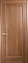 Межкомнатные двери Новый Стиль Премьера ПГ с гравировкой, фото 3