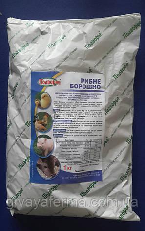 Рыбная мука 1 кг, для животных и птиц Белково-минеральная кормовая добавка, фото 2