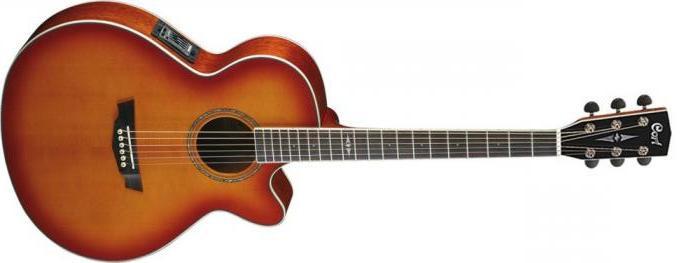Акустическая гитара c датчиком Cort  SFX5 LVB*