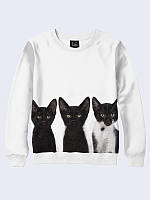 Свитшот Three cats
