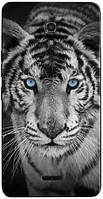 Чехол для Alcatel pixi 4.6 8050D  (Тигр)
