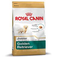 Golden Retriever Junior (12 kg)