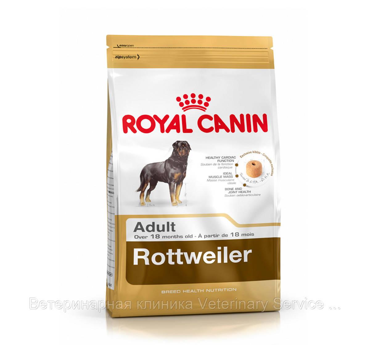 Rottweiler Adult (Ротвейлер 3 kg)