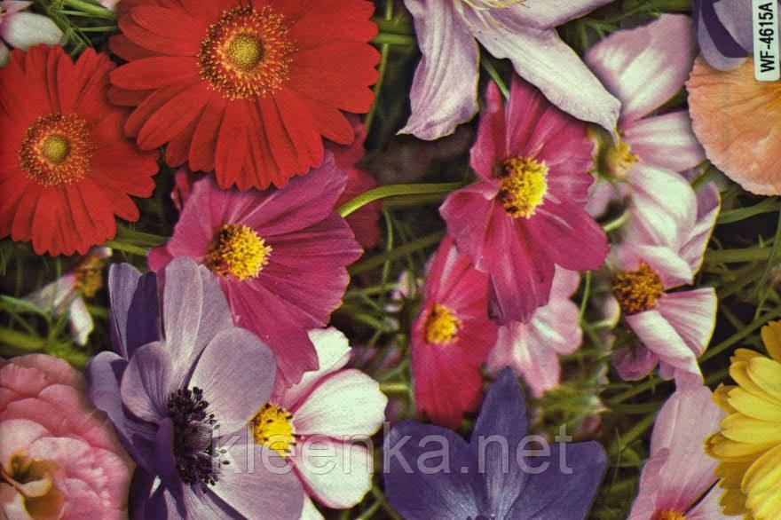 Клеенка  рулонная  на стол оптом с яркими цветами