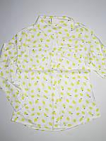 Рубашка для девочек Glo-Story оптом, 98-128 рр., фото 1