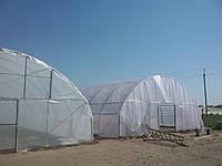 Промышленная теплица под пленку 9.6х50 м.