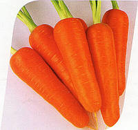 Морква Вікторія F1 200 000 насінин (1,8-2,0), фото 1