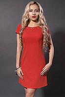 Летнее платье мод 277-5 ,красный квадрат , размеры 44,46,48, фото 1