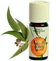 Эфирное масло Эвкалипт,натуральное, Швейцария / Evcalyptus