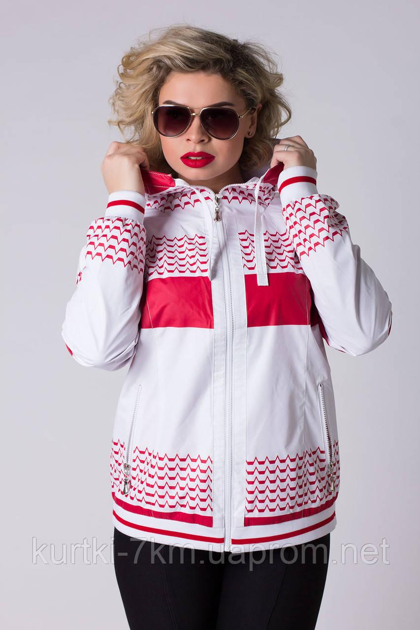 7dbaf6ff Женская ветровка спортивная большого размера Ocean №8682 - Женские куртки,  пуховики - Куртки 7км