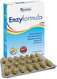 Enzyformula (Guna, Италия) - ферментная формула, фото 2