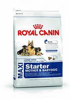 Корм Royal Canin Maxi Starter 4 кг