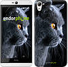 """Чехол на HTC Desire 826 dual sim Красивый кот """"3038u-312"""""""