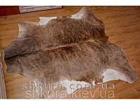 Шкура коровы коричнево-белая 14