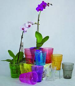 Кашпо для орхідей скляні і керамічні
