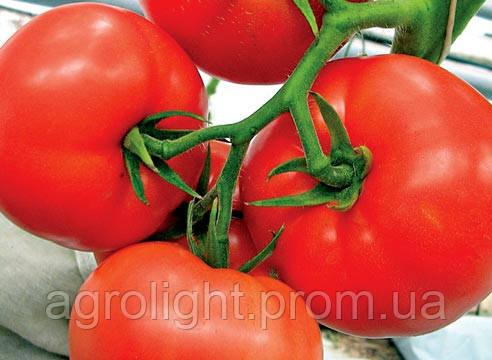 Купить Семена Томат Мобил среднеранний США 0,25 кг