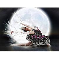 Схема Картины бисером СА-049 Черный лебедь