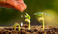 Из ЕБРР пришли радостные новости для малых фермерских хозяйств о деньгах