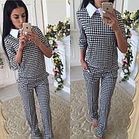 Женский стильный костюм: кофта и брюки в гусиную лапку черный+беый, S